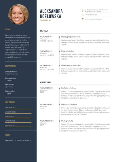 JavaDeveloper(Polish).pdf